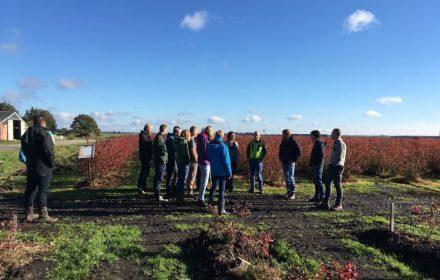 Deelnemers aan het introductieweekend in Drenthe