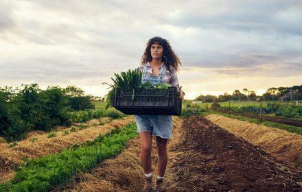 Meisje produceert eten - © Josh Hodge